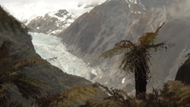 Franz Josef Glacier in Westland Tai Poutini National Park seen from a distance with some misty cloud cover and vegetation nearby