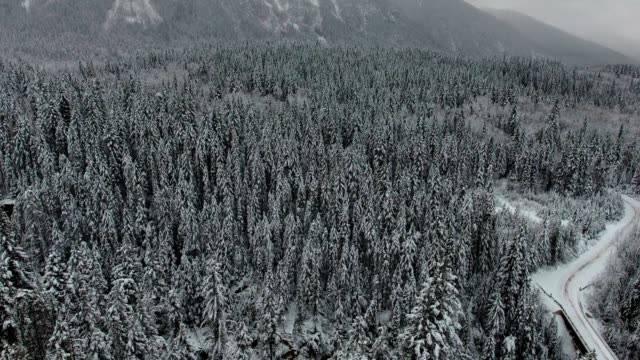 Fraser River Headwaters in the winter