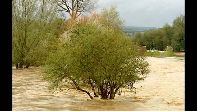 Freak hail storm causes Devon chaos ENGLAND Devon Ottery St Mary EXT Tree submerged up to branches in floodwater Men wearing fluorescent overalls...
