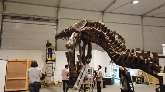 Fred Deurman and Remmert Schouten from of Naturalis Biodiversity Center unpack Trix the T rex a tGlasgow's Kelvin Hall the world's only real touring...