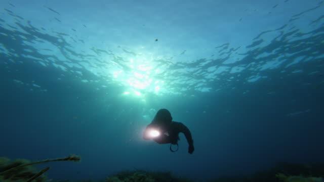 青い海で無料のダイバースピアフィッシング:懐中電灯で水中何かを探しています - 水中カメラ点の映像素材/bロール