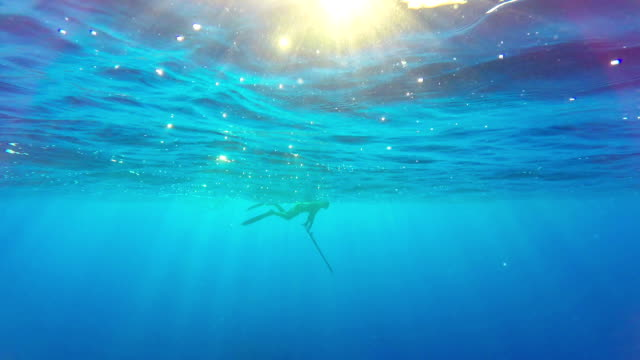 free diver spearfishing in blue sea - sleep apnea stock videos and b-roll footage