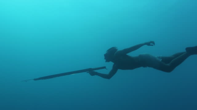 A free diver spearfishing in the ocean