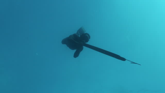 vidéos et rushes de a free diver spearfishing in the ocean - indonésie