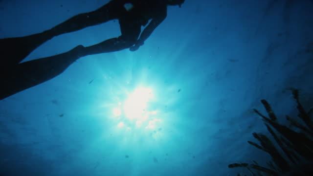 フリーダイバースウィミングブルーの海 - 無呼吸点の映像素材/bロール