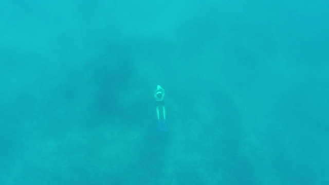 free diver - free diving stock videos & royalty-free footage