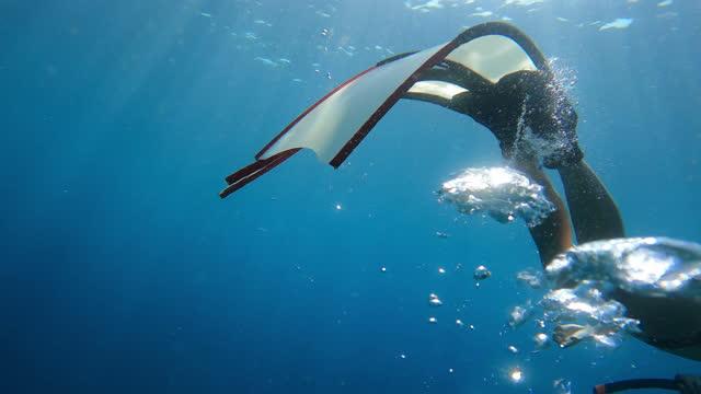 stockvideo's en b-roll-footage met 4k gratis duiken lange vinnen dolfijn kick stijl in het heldere water in de zee oceaan achter luchtbel - zwemvlies