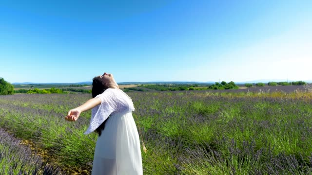 free young woman with open arms enjoing time in lavender field - lavender stock videos & royalty-free footage