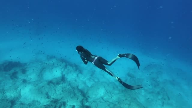 freediver diving in the blue water - free diving stock videos & royalty-free footage