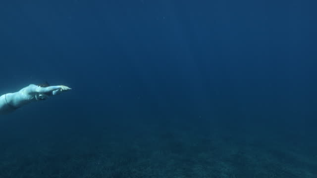 Freediver diving in the blue water
