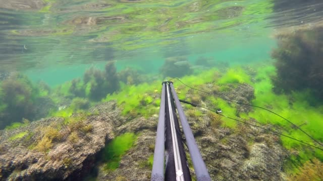 freediver in a diving suit spearfishing on the marmara sea - aqualung diving equipment stock videos & royalty-free footage