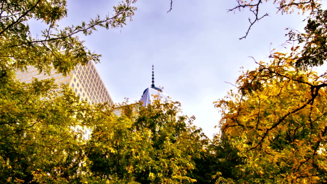 Freedom Tower and leaves