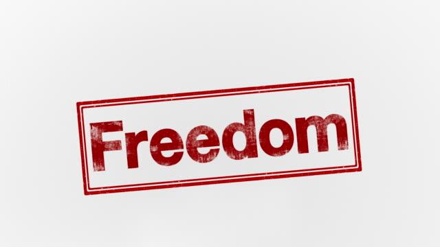 libertà - altruismo video stock e b–roll