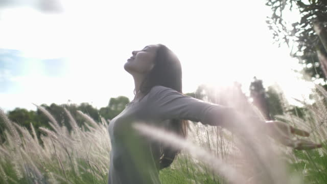 freedom woman arm raised in meadow grass - carefree stock videos & royalty-free footage