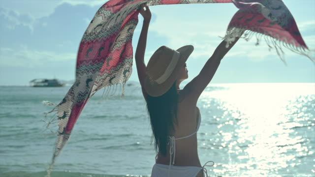 島だけで自由 - パレオ点の映像素材/bロール