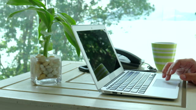 Freelance using laptop for working with nature background, freelance workplace, dolly shot