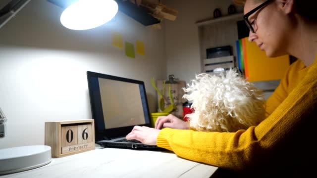 vídeos de stock, filmes e b-roll de freelancer trabalhando no laptop em casa. - trabalho de freelancer