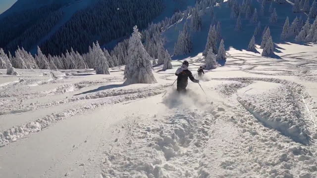 freeride skiers charging down through the forest in fresh deep snow powder. slow motion - deep snow stock videos & royalty-free footage