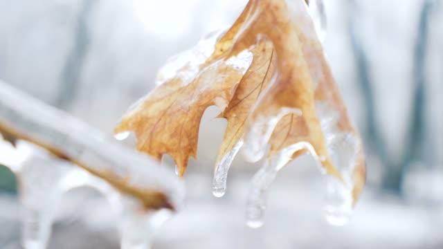 freezing rain effect. - frozen water stock videos & royalty-free footage
