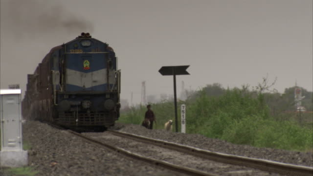 A freight train passes a goat herder by the train tracks. Available in HD.