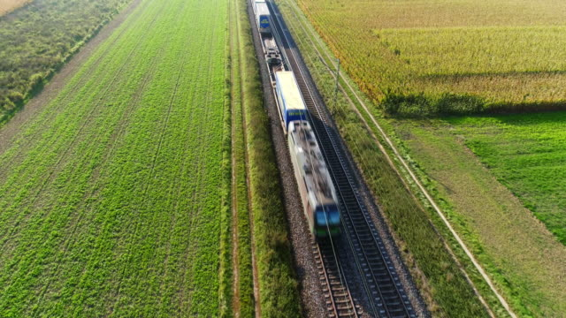freight train passing through countryside in the afternoon - ferrovia video stock e b–roll