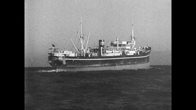 vidéos et rushes de freighter ship w/ seagulls at sea atlantic ocean - océan atlantique