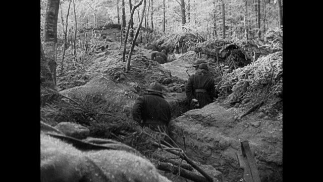 vidéos et rushes de montage french army soldiers patrolling the maginot line through snow, along woodland road, and inside trenches, patting a dog in passing / strasbourg, france - soldat