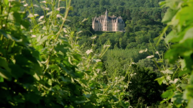 WS French Chateau in Marne valley seen through vineyard / Epernay, Champagne, France