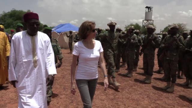french defence minister florence parly visits niger for talks aimed at boosting the operational dynamics of the g5 regional force that is fighting... - dynamics stock videos and b-roll footage