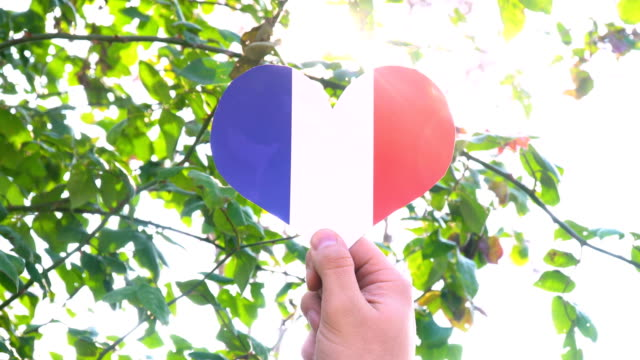 french flag on heart shape - cote d'azur stock videos & royalty-free footage