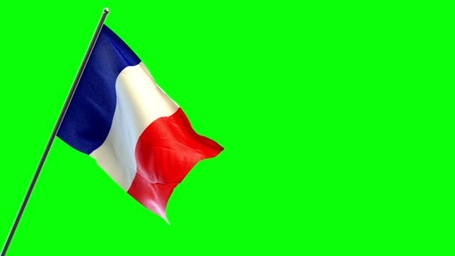 french flag - french flag stock videos & royalty-free footage