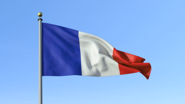 MS, French flag waving against blue sky