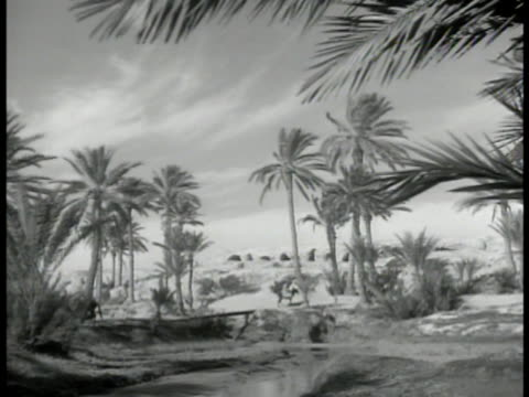 french military tents ws encampment tropical trees ms tunisian soldiers drawing water from well ws covered tanks ws wheat bales stacked ws drums of... - ドラム容器点の映像素材/bロール