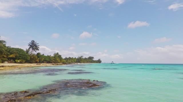 french polynesia time lapse fakarava atoll turquoise lagoon 4k video - south pacific ocean stock videos & royalty-free footage