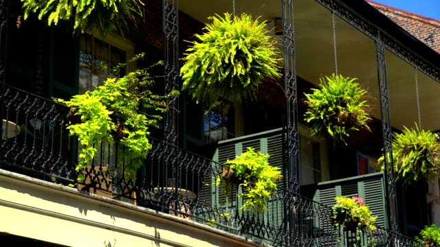 french quarter new orleans famous for restaurants louisiana - ornate stock videos & royalty-free footage
