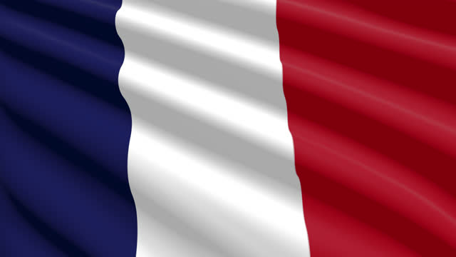french republic flag blowing in the wind, 3d animation. seamless loop. - 連続文様点の映像素材/bロール