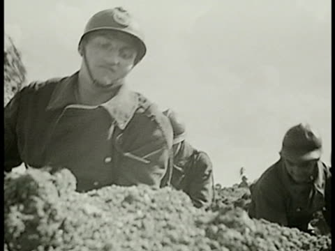 french soldiers digging trenches on field cu soldiers digging w/ axes shovels ms soldiers in trench digging w/ shovels vs soldiers laying flat... - trench stock videos & royalty-free footage