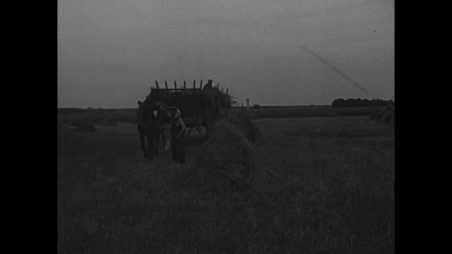 VS French soldiers in shirt sleeves fish in river with makeshift poles / horsedrawn cart approaches bearing hay / man atop wagon arranges bundles of...
