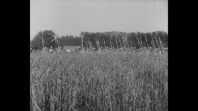 french soldiers march behind a cornfield / troops are reviewed by commander in chief philippe petain / two shots of petain adjusting standard on... - französische armee stock-videos und b-roll-filmmaterial