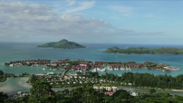 stockvideo's en b-roll-footage met a french tourist was seriously injured after being attacked by a shark while swimming in the seychelles a popular tourist destination the french... - fish swim