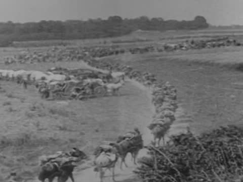 french troops moving to verdun - ww1 battle stock videos & royalty-free footage