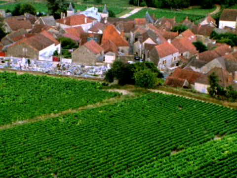 French village and vineyards from above