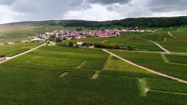 French Vineyards and a village in Burgundy flying over