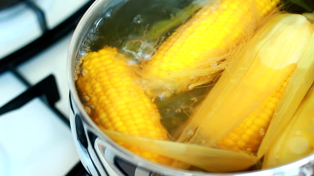 Fresh and juicy corn cobs boiling in pot
