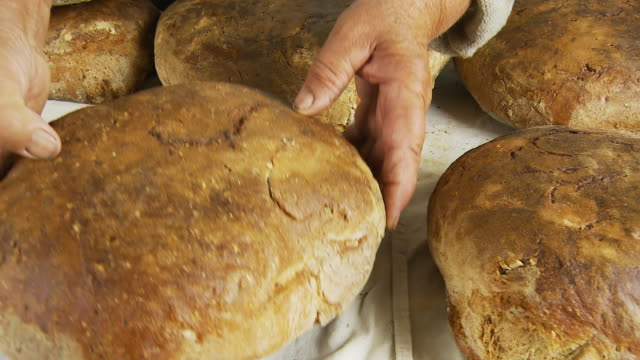 hd dolly: fresh baked peasant bread - peasant bread stock videos and b-roll footage
