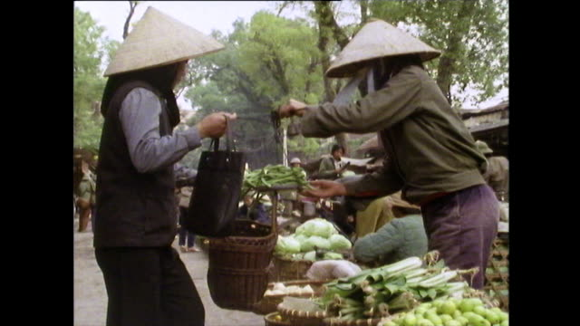 fresh bananas being sold in outdoor market in hanoi; 1989 - bamboo plant stock videos & royalty-free footage
