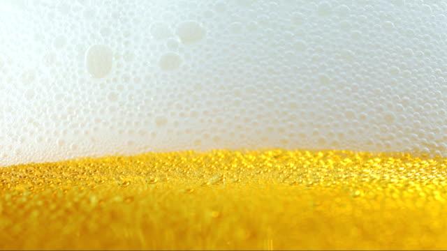 vídeos de stock, filmes e b-roll de cerveja. close-up vista. - bebida com espuma