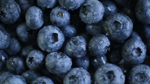 vídeos y material grabado en eventos de stock de fresh blueberries - freshness