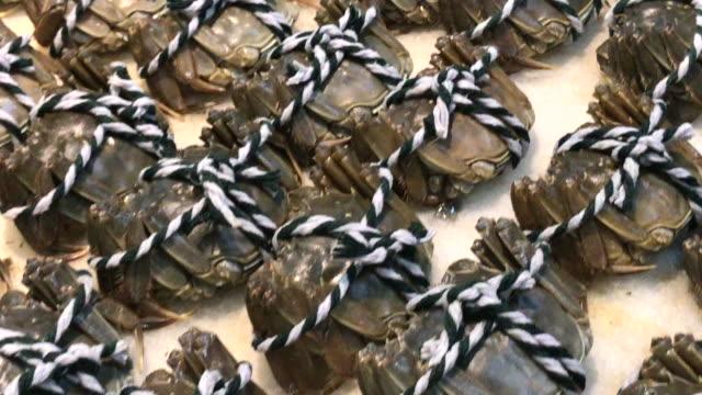vídeos de stock, filmes e b-roll de caranguejo fresco de luva chinesa no restaurante, beijing, china. - mitten