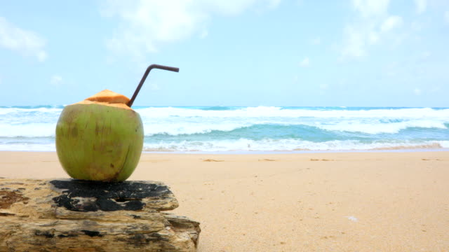fresh coconut with drinking straw on tropical beach, phuket, thailand. 4k - clima tropicale video stock e b–roll